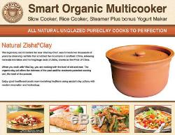 VitaClay Smart Organic Multicooker & Clay Insert Oval, 8 Cup Dry / 4.2-Quart